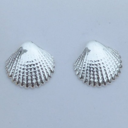 Sterling Silver Seashell Studs