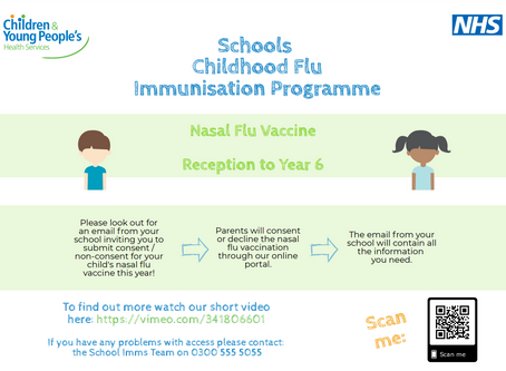 Annual Flu Immunisation Program