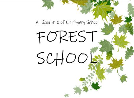 This Week at Forest School - Friday 18th September 2020