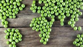 O que aconteceria se o mundo inteiro virasse vegetariano?