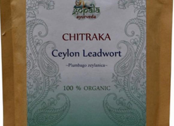 Chitraka – Ayurveda – bom para Metabolismo