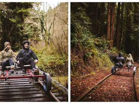 See the redwood forests of coastal California from the seat of a rail bike | Bartell's Backroads