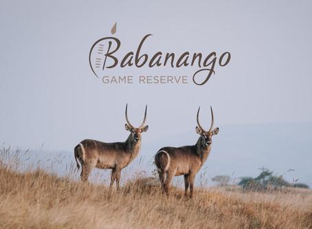 SAWUBONA AND WELCOME TO BABANANGO GAME RESERVE - YOUR WEEKEND GETAWAY IN KZN