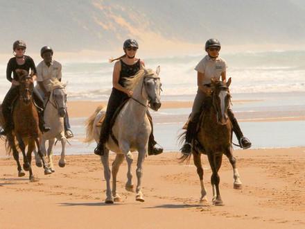 BHANGAZI HORSE SAFARIS