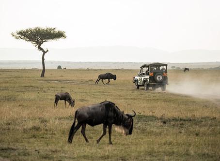 Spend A Weekend In Limpopo at Sediba Luxury Safari Lodge