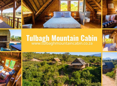 Essential Business Travel Accommodation at Tulbagh Mountain Log Cabin