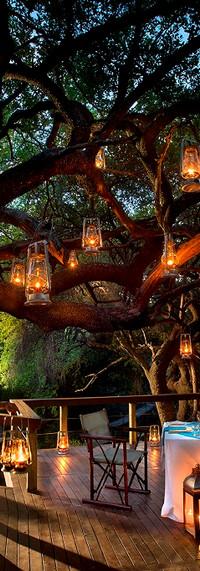 Jacis-Safari-Lodge-Main-Lodge-Dining.jpg