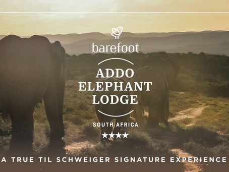 Spend a Weekend exploring barefoot Addo Elephant Lodge