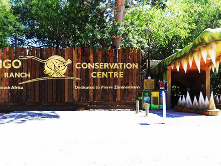 Cango Wildlife Ranch and Conservation Centre