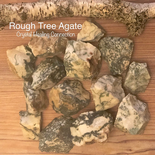 Rough Tree Agate