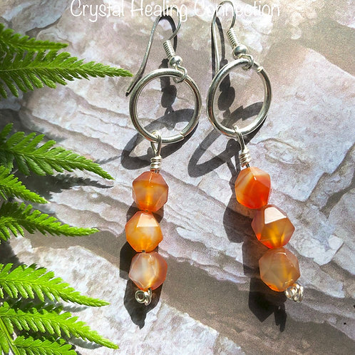Carnelian Wire Wrapped Circle Earrings