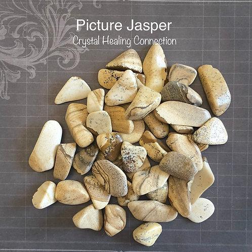 Picture Jasper Small