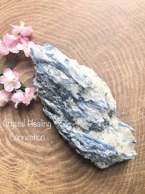 XL Natural Rough Kyanite Specimen
