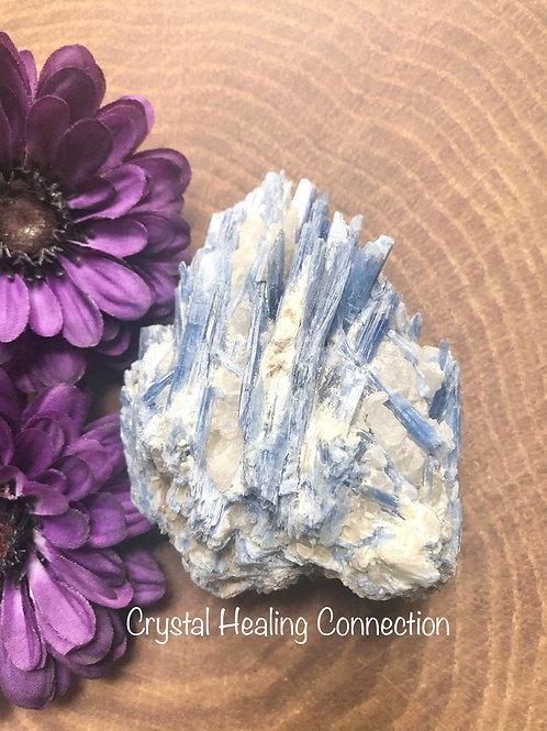 Natural Rough Kyanite Specimen