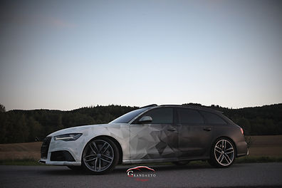 RS6 3D Gradient (3 of 10).jpg