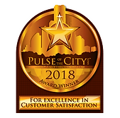 Pulse of the City 2018.PNG