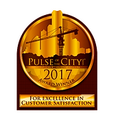 pulse of the city 2017.png