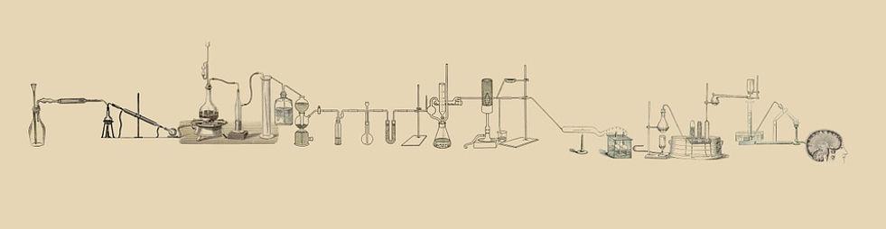 lab-512503_960_720.jpg