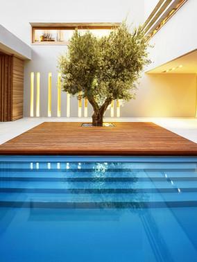 Pool Deck Feature.jpg