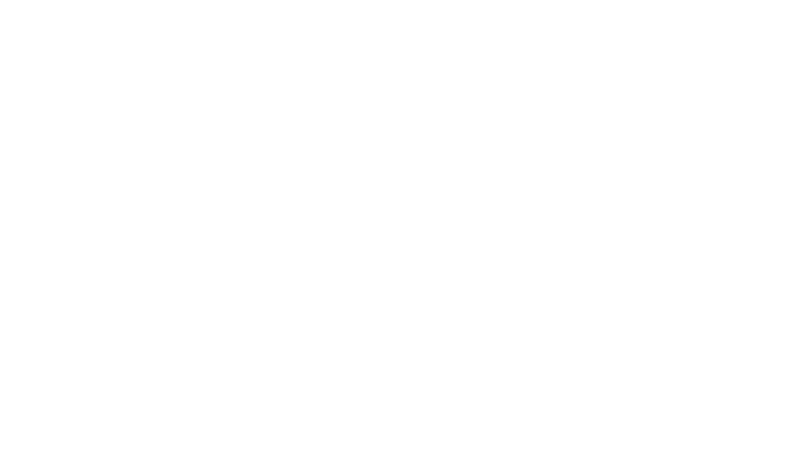 BSA bike