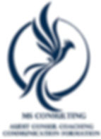 logo ms Consulting.jpg