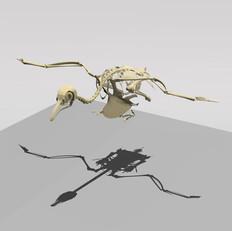 birdrobot2.jpg