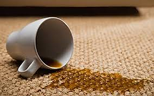 spot clean carpet stains