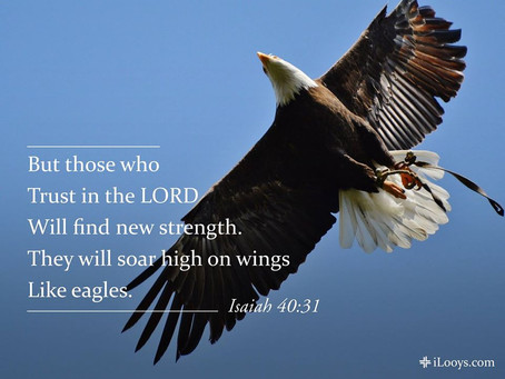 Wings of Faith