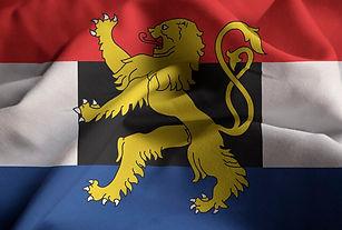 BENELUX-FLAG.jpg
