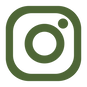 INSTA icon Chamber Green.png
