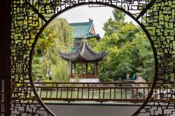 Sun Yat-Sen garden-5674