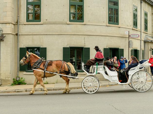 Quebec City horse carriage-7409.jpg