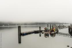 Ucluelet harbor fog-6339