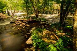 Blakeney Rapids-2-4