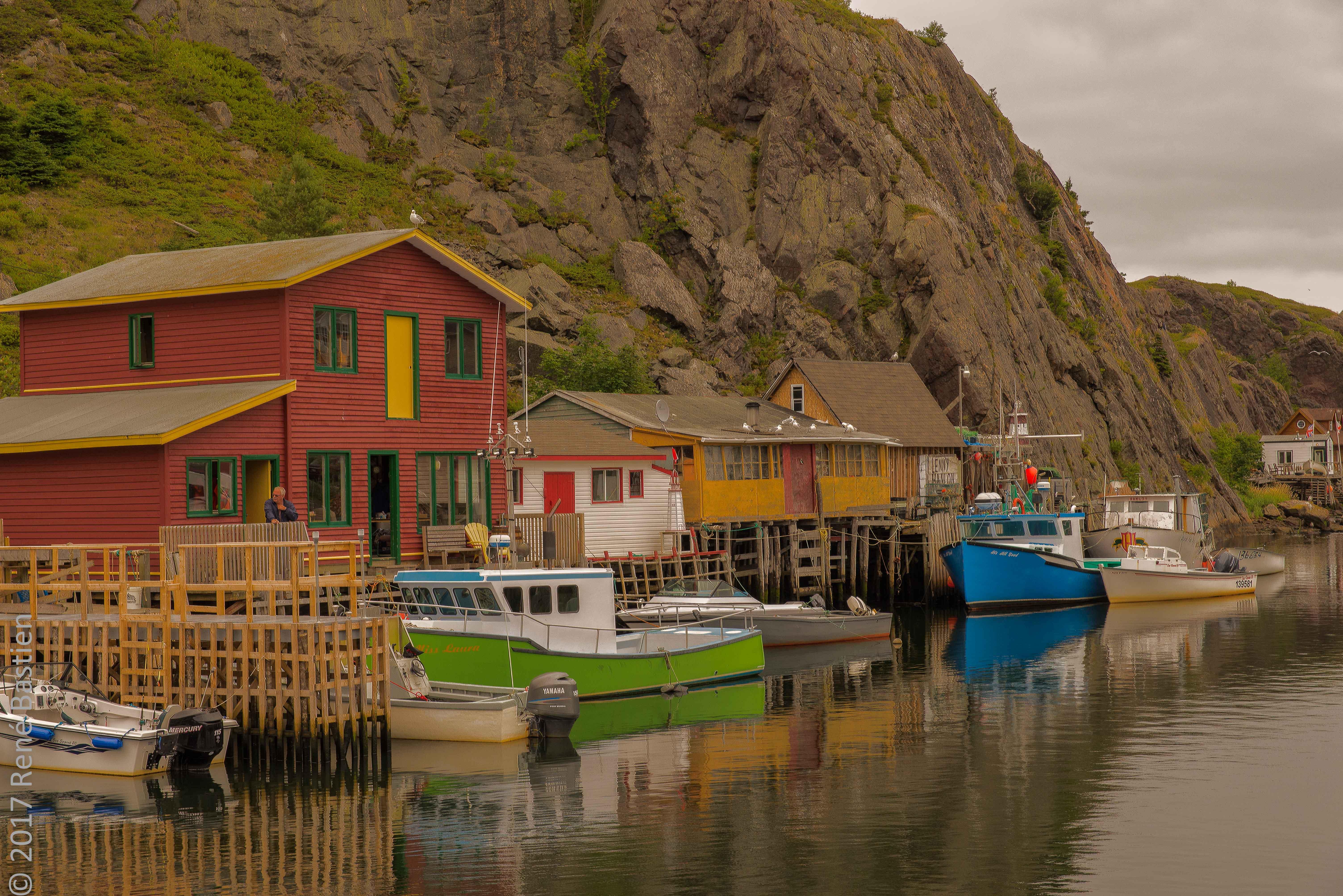 quidi vid harbor-3211