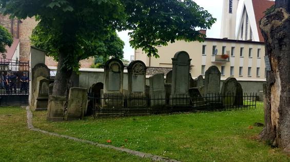 בית קברות יהודי בטרנוב פולין