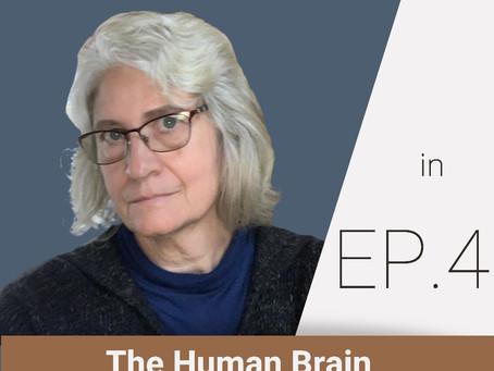 Bells, the Brain, and Belief