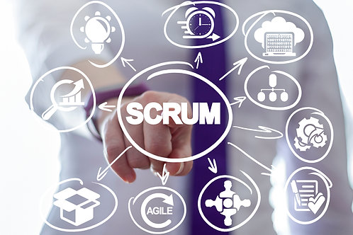 SCRUM Emersion for the Agile PM