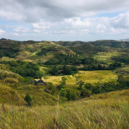 Tanarara Hill.jpg