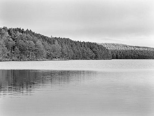 Lochan Eilean, Cairngorms