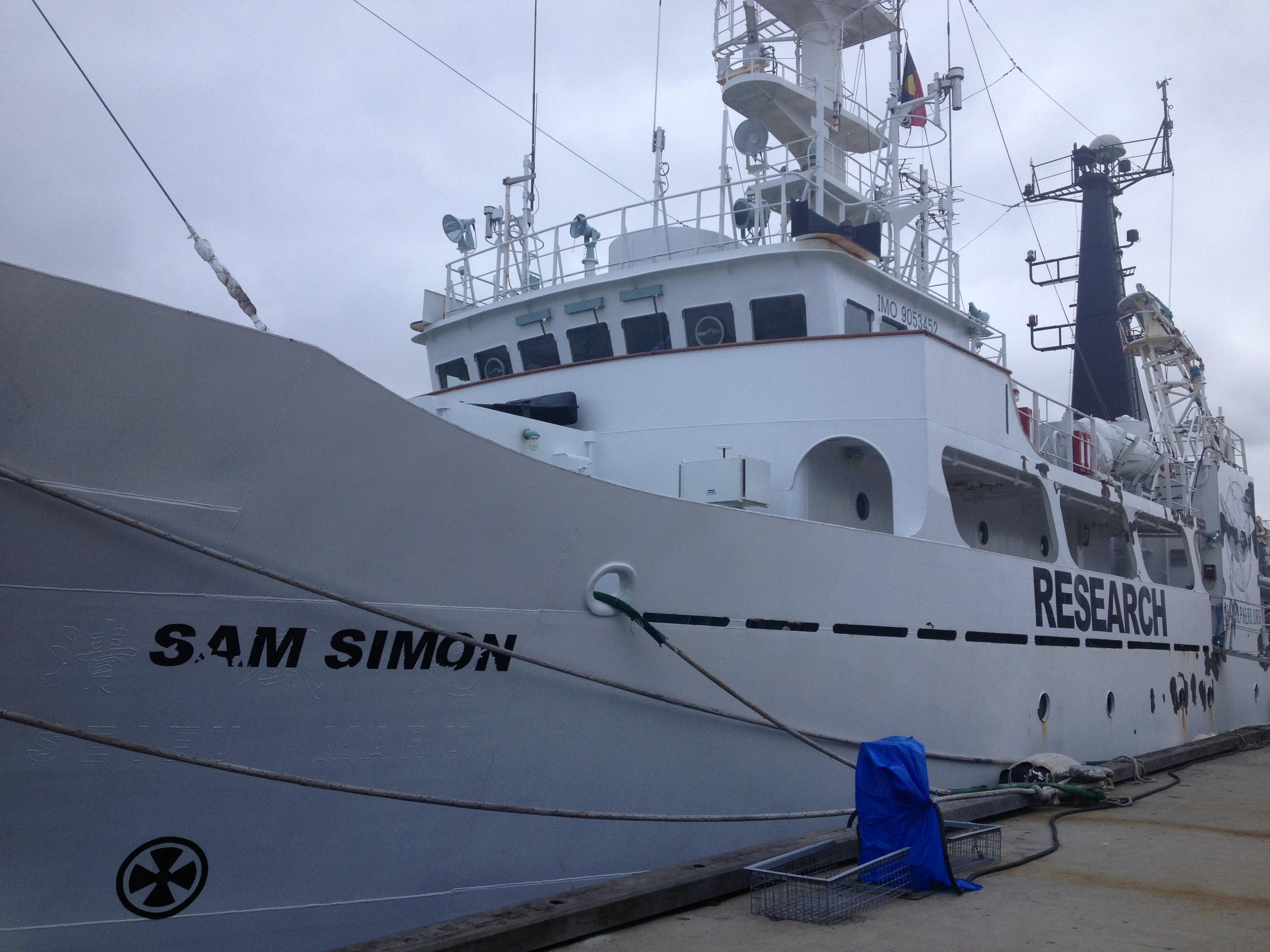 The Sam Simon-Sea Shepherd