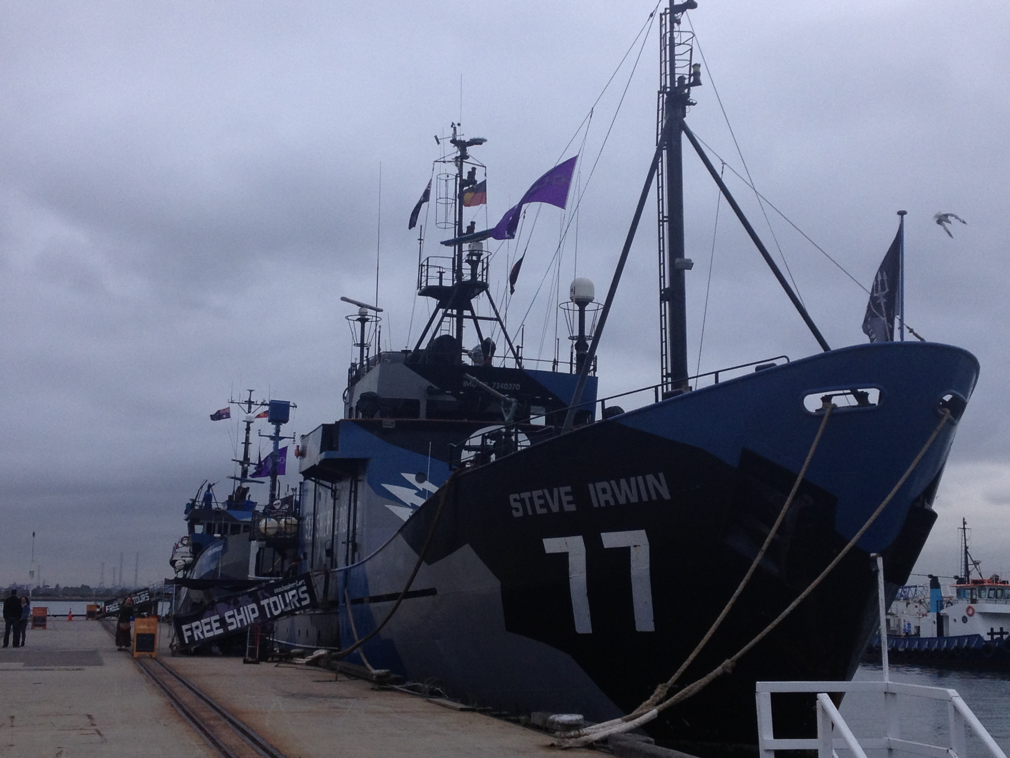 The Steve Irwin-Sea Shepherd