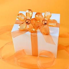 Orange Daisy Napkin Holders