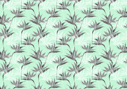 502 aqua birds of paradise small screen