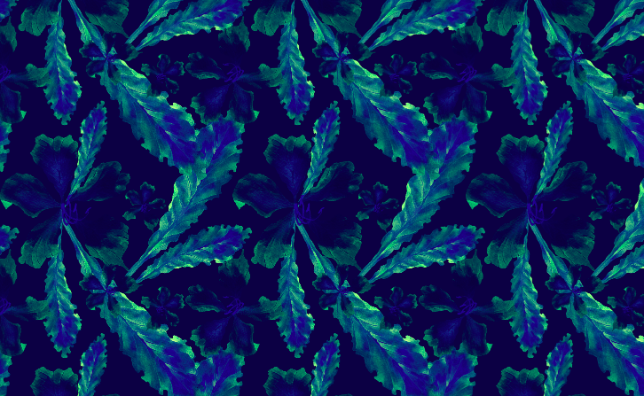 501 blue floral screen shot