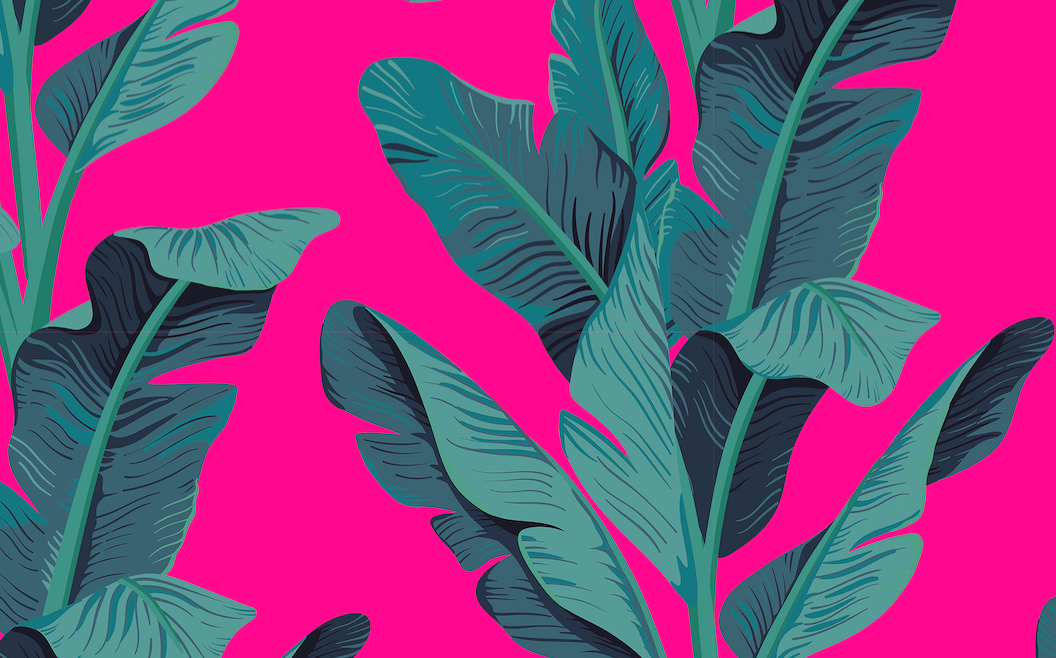 487 hot pink banana leaves
