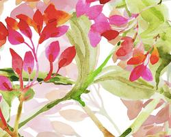 495 spring watercolor blooms