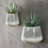 Thumbnail: Ceramic Wall Hung Planter - Black Lines