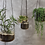 Thumbnail: Viri Hanging Planter - Clear