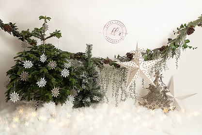 christmasbackdrop2021.png